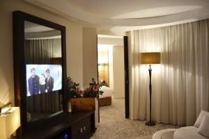 Mirror TV set