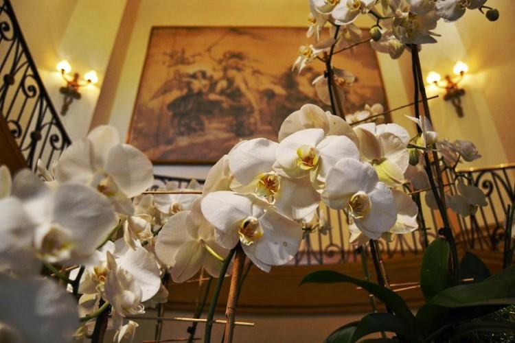 Fresh flowers orchids at the Four Seasons Las Vegas