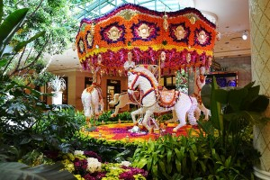 The flower carousel
