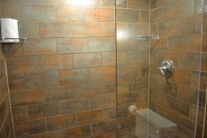 The shower in the first bathroom