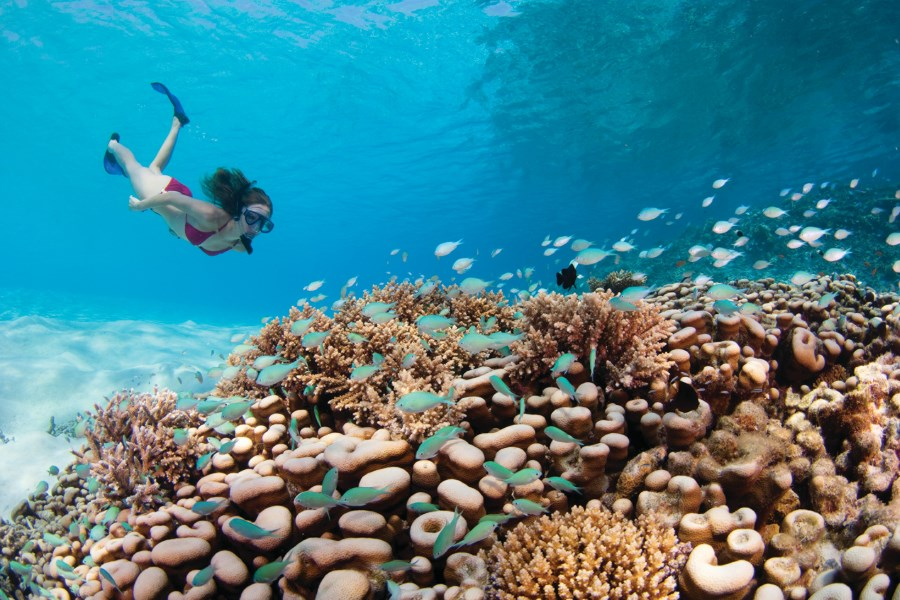 Four Seasons Kuda Huraa - Snorkeling